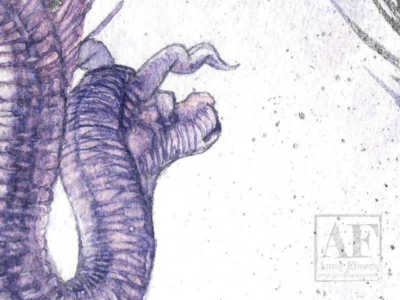 Detail 01